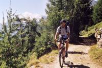 Bike Wallis